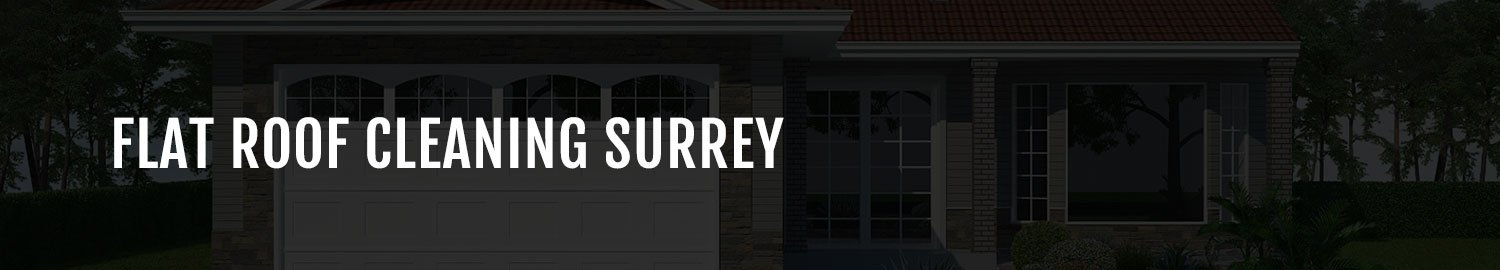 roof cleaning in surrey